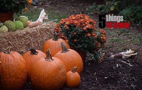 5 Things to Know: Week of Nov. 21