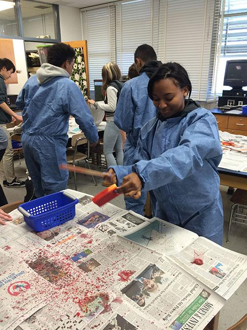"""Senior Ariana Graham splatters the fake blood from the sponge to imitate a crime scene. """"It's a hands-on demonstration for the students to make observations on blood spatter patterns,"""" Forensics teacher Marci Phillips said."""
