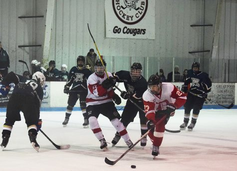 Hockey teammates lead Lions to the playoffs