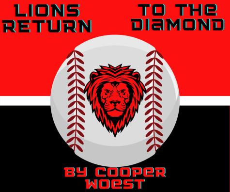 Lions return to the diamond